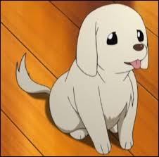 Comment s'appelle le chien de Mayu ?