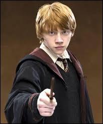 Qui est ce jeune homme qui est ami avec le héros de la saga ?