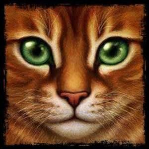Quel était le tout premier nom d'Etoile de feu quand il était chat domestique ?