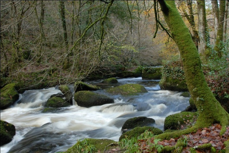 """La """"Rivière d'argent"""" est un cours d'eau français situé en Bretagne. De quel fleuve est-elle l'affluent ?"""