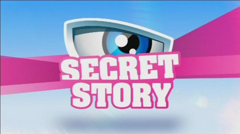 Depuis combien de saisons Christophe Beaugrand présente-t-il Secret Story ? (en comptant la saison 11)