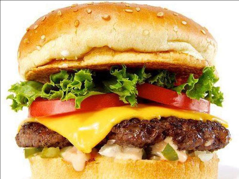 D'où viennent les hamburgers ?