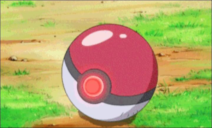 Quel est votre type de Pokémon préféré ?