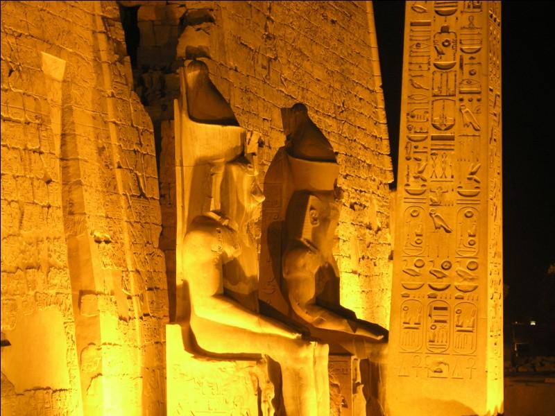 Je me trouve en Égypte vers Louxor. J'abrite les tombes (hypogées) de nombreux rois, reines, enfants de rois et nobles égyptiens (Toutânkhamon, Aÿ, Ramsès II, Ramsès III...). Que suis-je ?