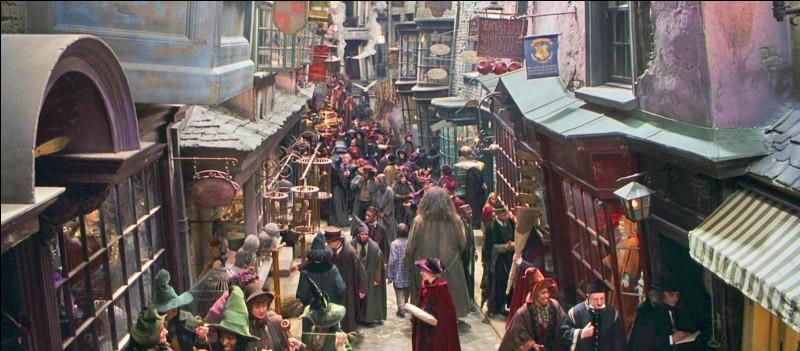 Comment se nomme le chemin où Harry achète ses fournitures ?