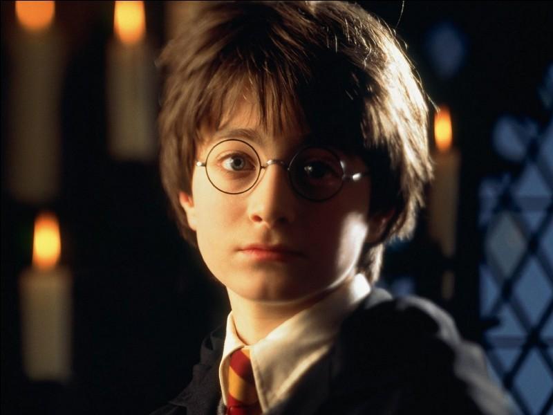 Où dort Harry Potter dans la maison des Dursley ?
