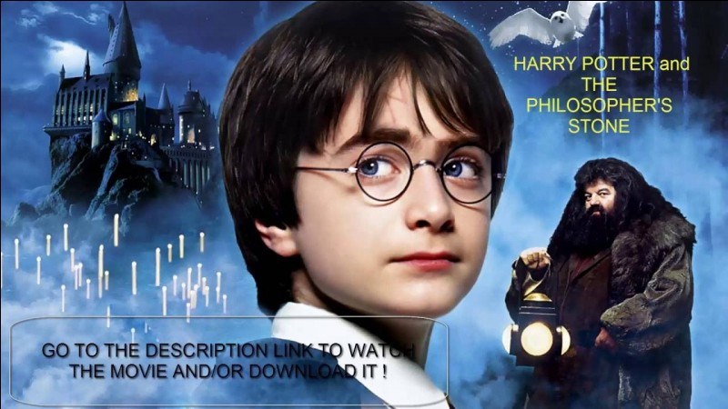 Qui vient chercher Harry pour l'emmener à Poudlard ?