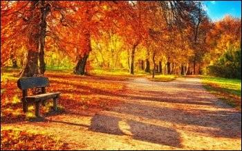 Les saisons étant inversées dans l'hémisphère sud, l'automne astronomique dit austral va du :