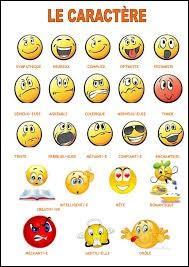 Quel caractère te définit le mieux ?