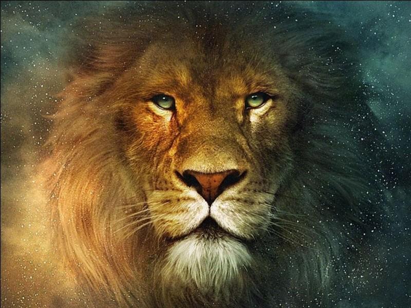 Il peut très bien tuer un lion et le manger.