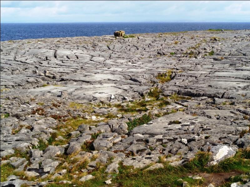 Nature : Quel est ce parc national, situé dans le comté de Clare, caractérisé par un plateau calcaire qui s'est fragmenté lors des glaciations pour donner ce somptueux paysage ?