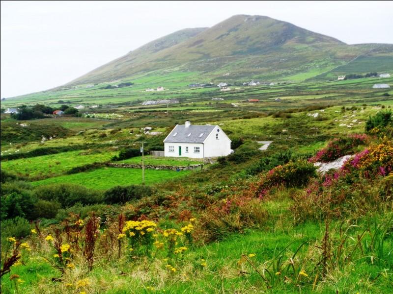 Société : Suite à quel événement de l'histoire irlandaise le trèfle est-il devenu l'autre symbole du pays ?
