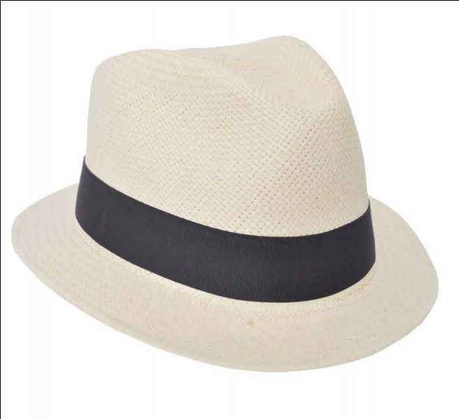 De quelle couleur est son chapeau préféré ?