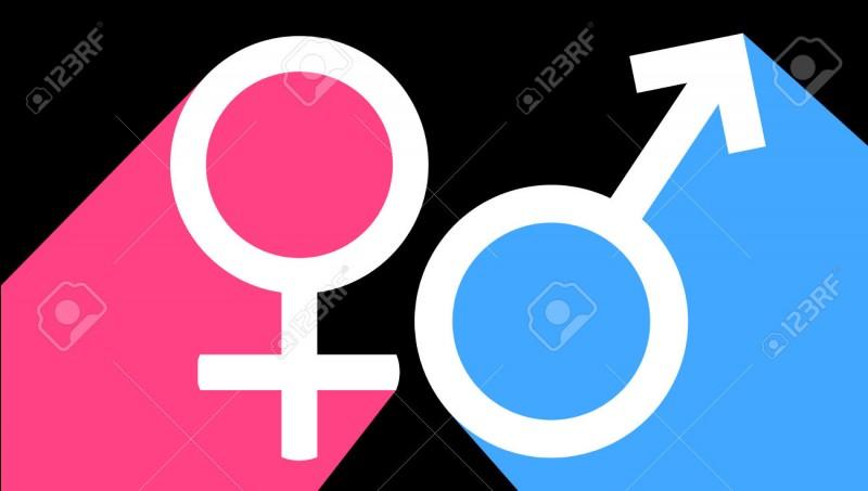 Et pour la fin, es-tu masculin ou féminin ?