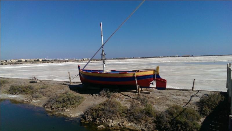 Où se trouve l'île Saint-Martin, située dans l'étang de l'Ayrolle, connue pour ses salins ?