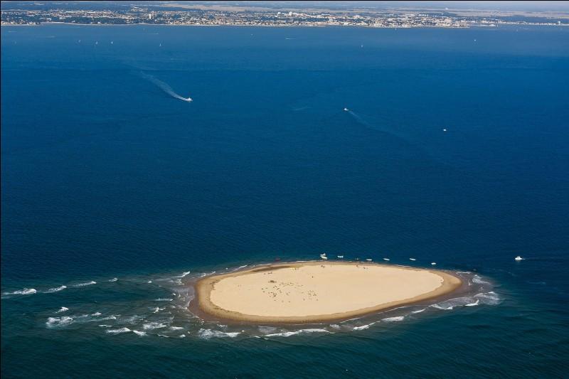 """Apparues en 2009 après la tempête Klaus l'île """"sans nom"""" est située à l'entrée de l'estuaire de ..."""