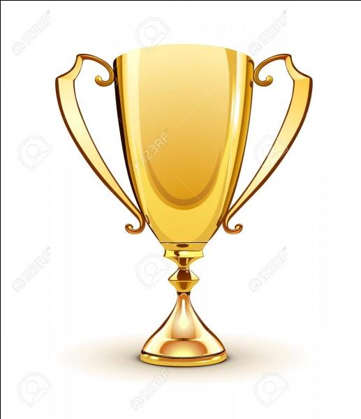 Laquelle de ces récompenses n'a jamais été remportée par la série ?