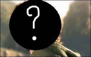 Quel acteur très connu a également auditionné pour le rôle de Frodon ?