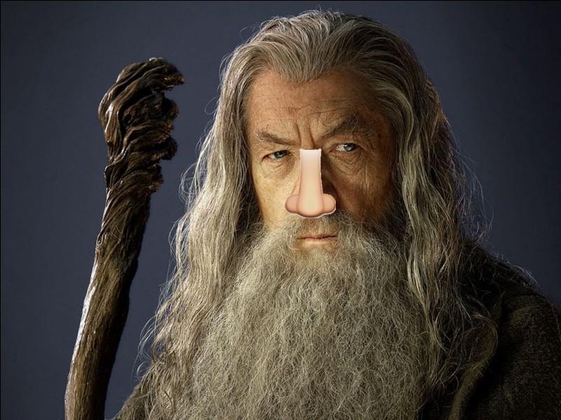 Combien ont-ils fait de prothèses pour le nez de Gandalf ?