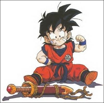 Pourquoi le fils de Goku s'appelle-t-il Son Gohan ?