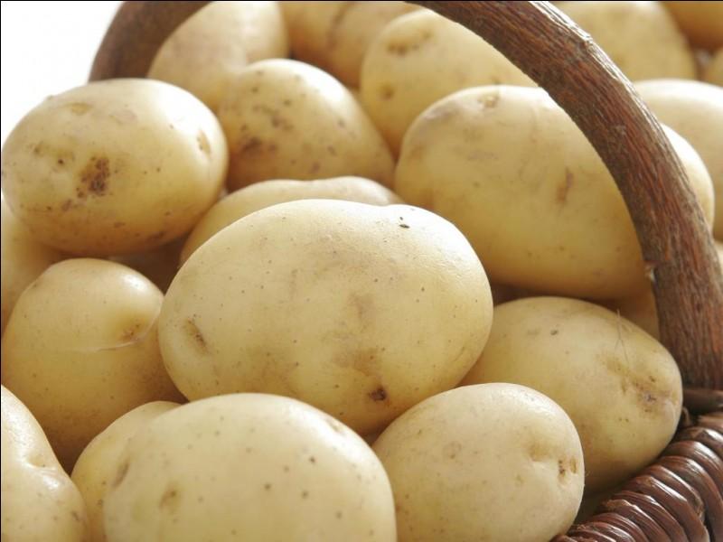 POMMES DE TERRE - L'enfant a besoin de manger plus de pommes de terre que l'adulte.