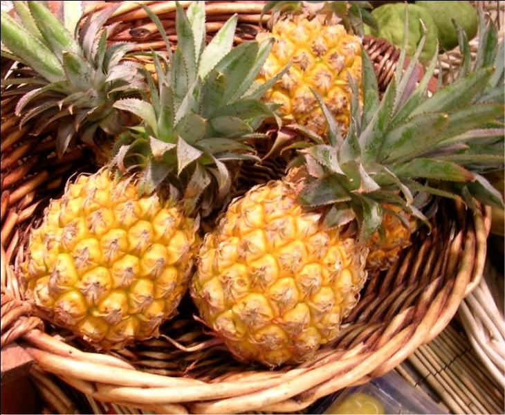 ANANAS - L'ananas fait maigrir.