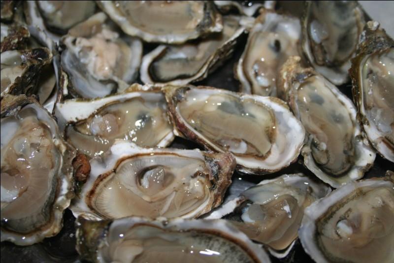 HUÎTRES - Les allergies aux huîtres peuvent être graves.