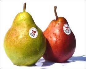 POIRE - La poire est originaire d'Asie centrale.