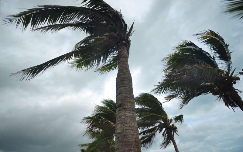 Comment s'appelle l'appareil servant à mesurer la vitesse de déplacement du vent ?