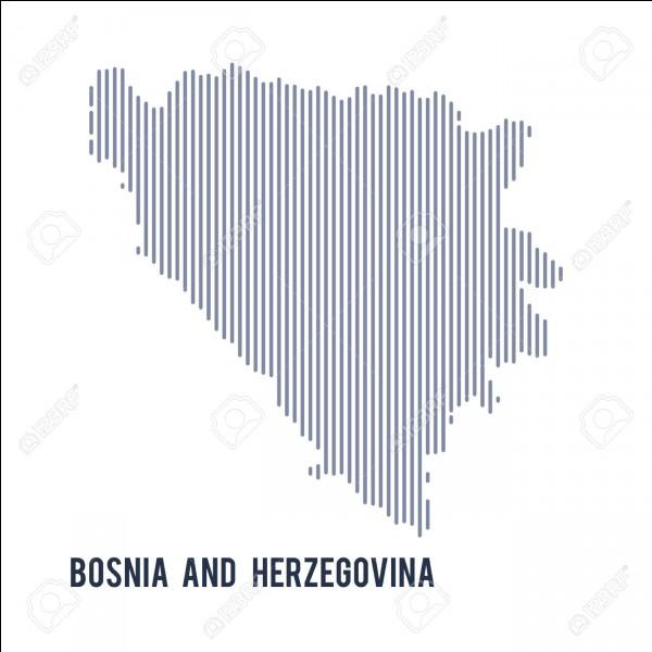 Tout d'abord, combien y a-t-il de Bosniens dans ce pays (2013) ?