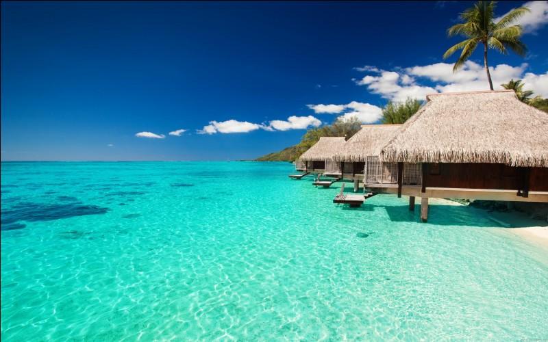 """Évadons-nous un peu et allons voyager au bord de la mer. Quelle mer est appelée """"la grande bleue"""" ?"""