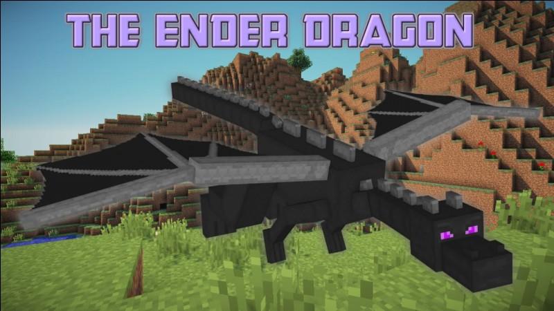 Qui est l'Ender Dragon ?