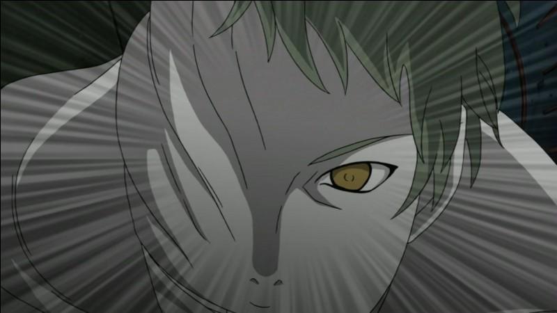 Combien de clones de Zetsu blancs ont été utilisés durant la 4e Grande Guerre Ninja ?