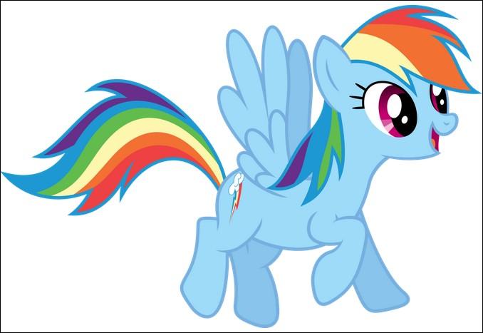 Combien de sœurs a Rainbow Dash ?