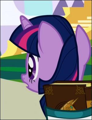 Comment s'appelaient les amies de Twilight à Canterlot ?