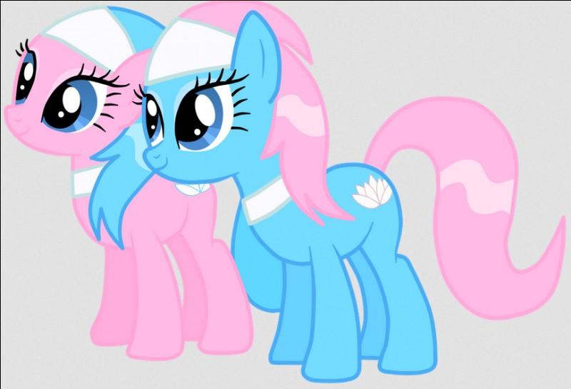 Comment s'appellent les deux sœurs du SPA de Ponyville ?