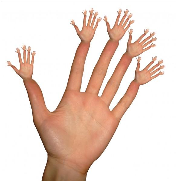 Quelle partie de la main est très sensible au toucher ?