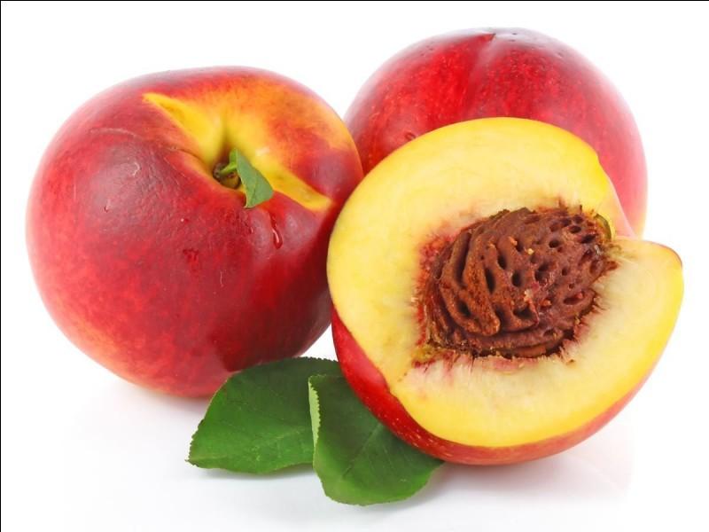 Est-ce un fruit ou un légume ?