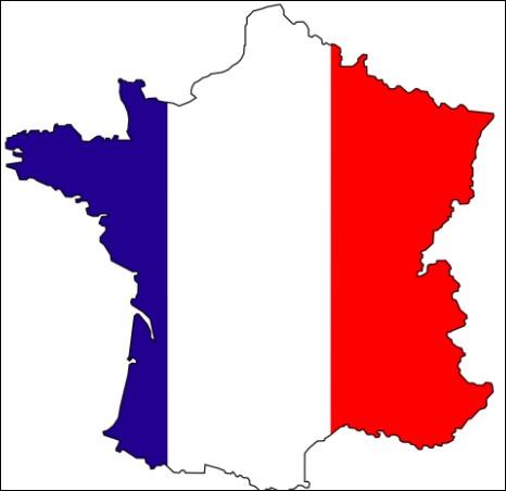 En quel année MovieStarplanet a-t-il décidé d'ouvrir un serveur en France ?