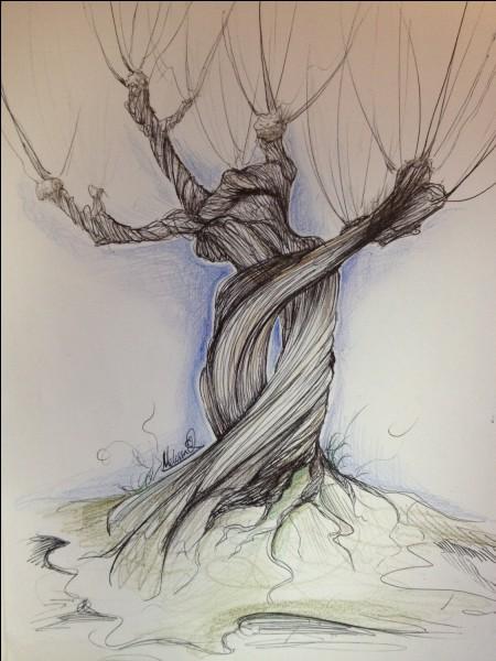 Comment s'appelle l'arbre qui se trouve devant Poudlard ?
