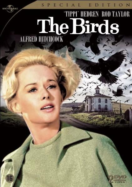 """Dans le film """"Les Oiseaux"""", que vient acheter Mélanie Daniels chez la marchande d'oiseaux ?"""