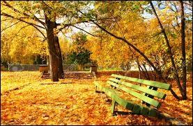 Quelle est l'orthographe de ce pigment que les feuilles perdent en automne avant de tomber ?