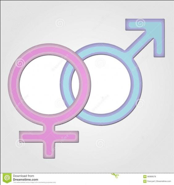 Es-tu une fille ou un gars ?