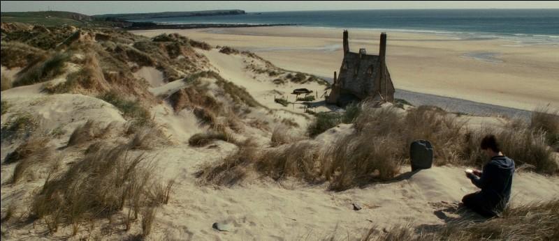 Ce joli paysage abrite une bien jolie maison. Quel animal se cache ici ?