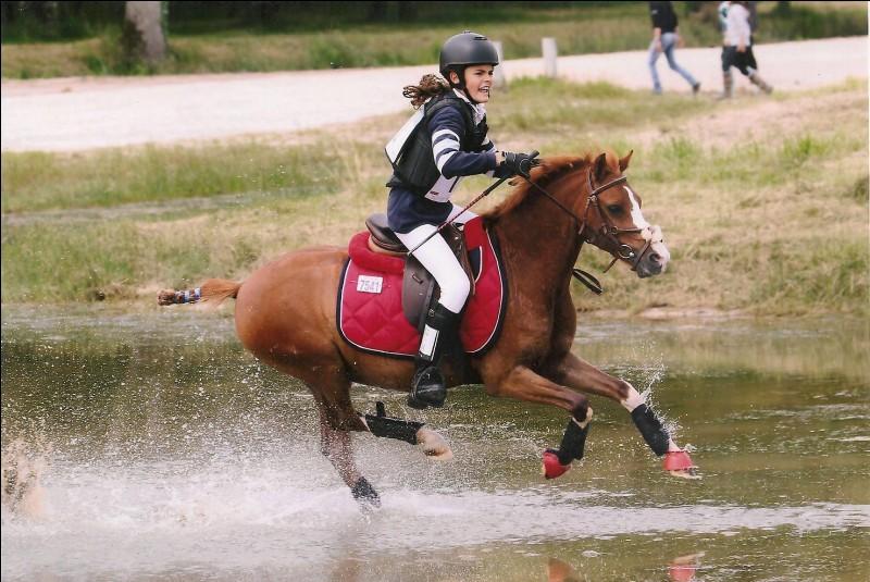 Nous formons un couple tout-terrain car je suis un cheval :
