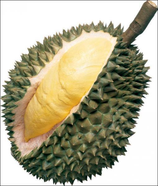 En Asie du Sud-Est, on consomme un gros fruit, le Durian, qui a la particularité d'avoir une odeur très forte et écoeurante. C'est pour cela qu'il est interdit :