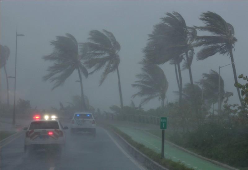 Cet ouragan a dévasté Cuba, puis la Floride en 2017. J'ai nommé l'ouragan...