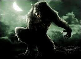 Le loup-garou est aussi appelé Lycanthrope.
