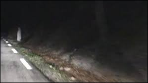 D'après la légende, voir une dame blanche au bord d'une route la nuit signifie qu'un accident de voiture va se produire.