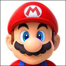 De quelle couleur est la casquette de Luigi ?